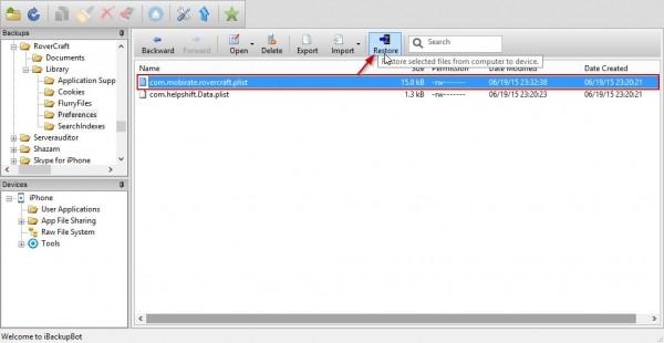добавленный в iBackupBot файл