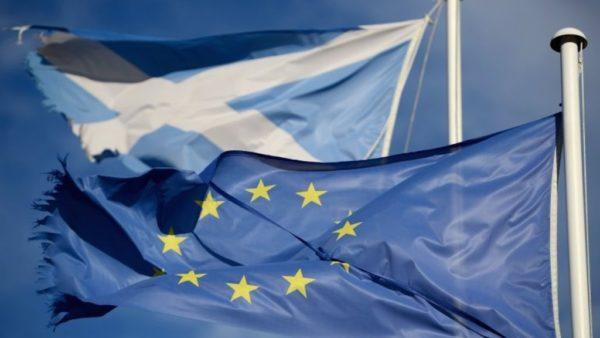 Шотландия не хочет покидать единый рынок