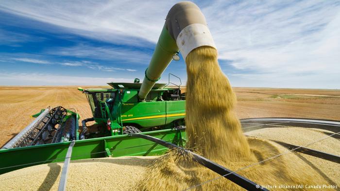 Экспорт аграрной продукции