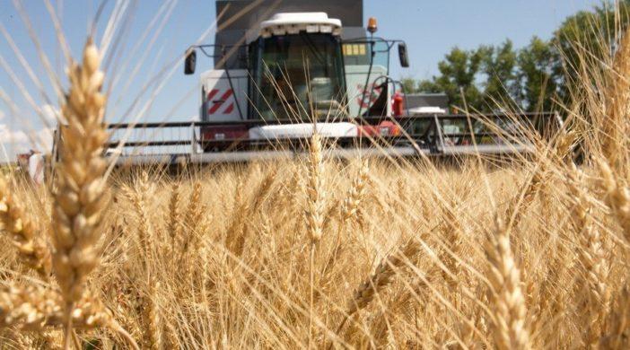 снижение НДС для аграриев