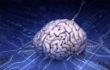 аналоговый процессор, работающий на принципах функционирования головного мозга